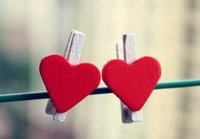 srce uvek zna