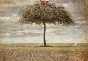 Moja kuća, moj mali svet