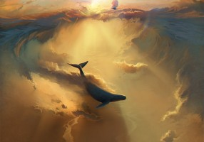 photo by: rhads
