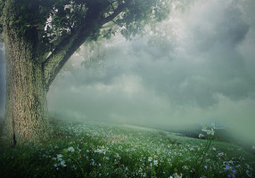 background_stock447_by_sophie_y-d5o9zv7