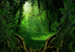 bg_nature_stock_by_moonglowlilly-d5p5pe3