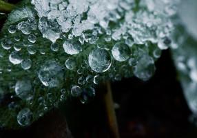 cusp_of_seasons_by_octoberlife-d4hjqom