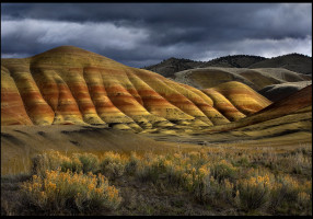 Color__Light_and_Form_by_MarcAdamus